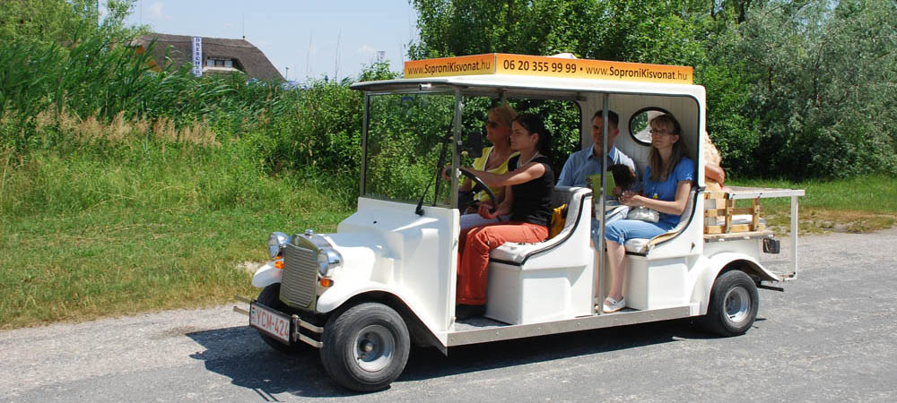 Electric car at Lake Fertő